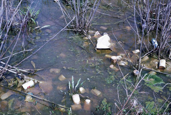 Stagnant water
